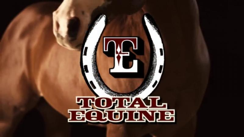 Total Equine New Age Feed